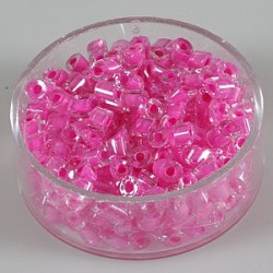 roza 17g.