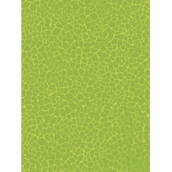 Decopatch papir 30 x 40cm 531