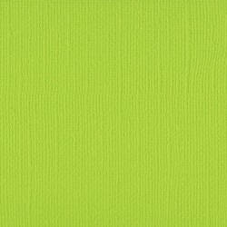 Florence teksturni papir 30x30cm 216g. Lime