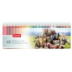 Bruynzeel barvni svinčniki Divje Živali set 50