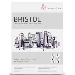 Bristol blok 250g. 20 listov