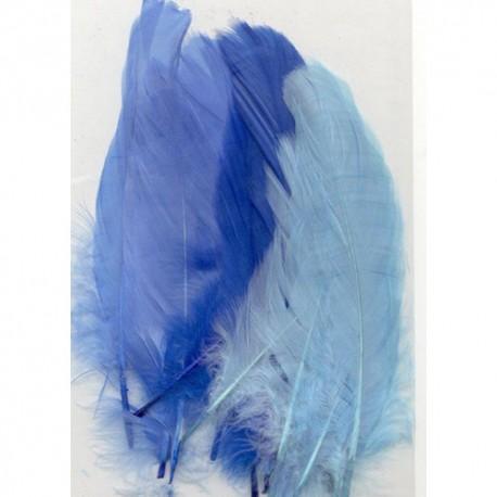 Perje Blue 3x5 kosov, 15 kos