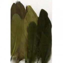 Perje Forest 3x5 kosov, 15 kos