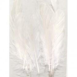 Perje Pure White 3x5 kosov, 15 kos