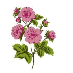 Nellies Štampiljke slojne Rože 70 x 50mm, 4 kosi