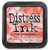 Tim Holtz Distress blazinica 5 x 5cm, Ride Persimmon