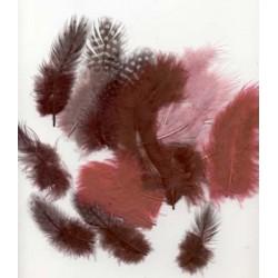 Mešano perje Marabu-Guinea 6 x 3kos, Vinsko rdeča