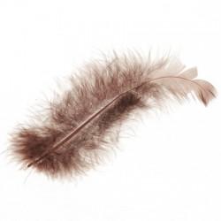 Marabu perje Rjava dolžina ca 10cm, 15 kosov