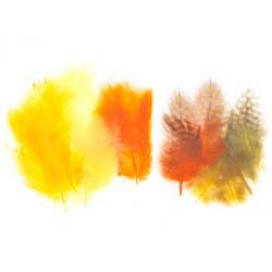 Mešano perje Marabu-Guinea 6 x 3kos, Velikonočne b