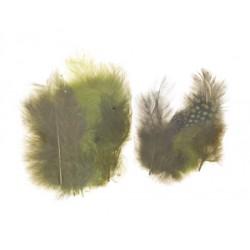 Mešano perje Marabu-Guinea 6 x 3kos, Gozdne b.